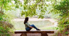 Les Français aiment leurs forêts: 87% sont prêts à la sauver