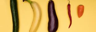 La pollution baisse la qualité du sperme... et réduit la taille des pénis