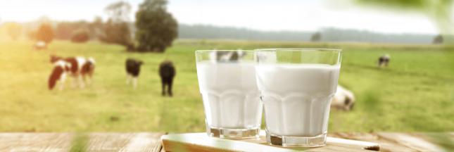 origine lait