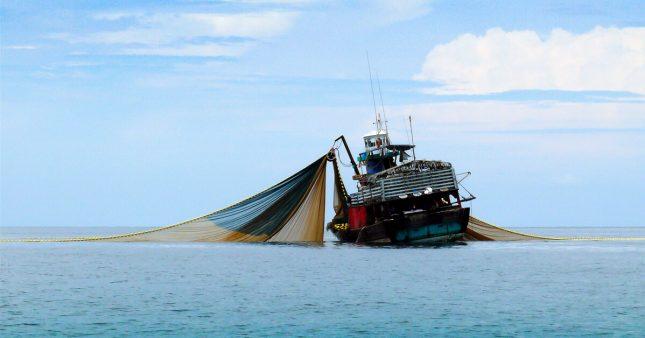 Pêche au chalut et aviation, une même empreinte carbone!