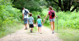 Week-end près de chez soi – Les applications randonnée, balade ou découverte de la nature utiles