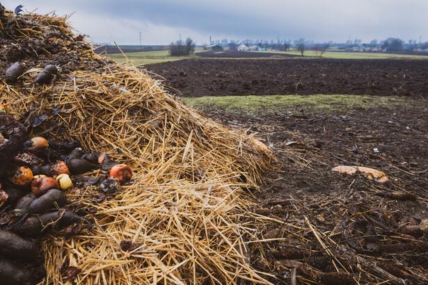 compost moins de bactéries dangereuses