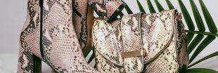 Pythons gonflés à l'air comprimé, crocodiles écorchés vifs... Les dérives de l'industrie du luxe