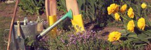 Tous à poil au potager samedi : c'est la journée mondiale du jardinage nu