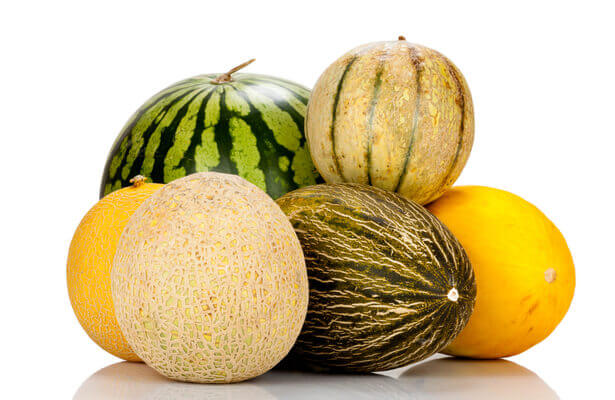 semis de melon