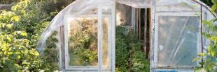 La serre : pour un jardin écoresponsable
