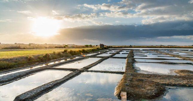 éco tourisme en Vendée