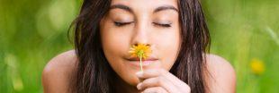 Le saviez-vous - À quoi sert le parfum des fleurs ?