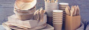 Vaisselle jetable sans plastique : pas si inoffensive et écolo que ça !