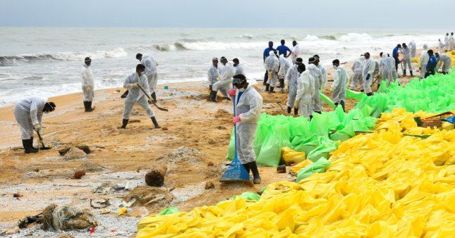 Après le naufrage du porte-conteneur, la faune marine à l'agonie au SriLanka