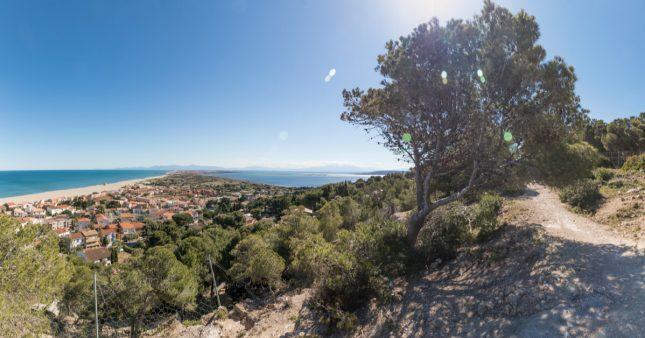 Alerte – La Méditerranée se vide de sa biodiversité!