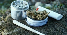 Dépénaliser le cannabis, une idée qui a fait son chemin chez les Français