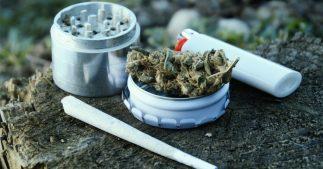 depennalisation cannabis