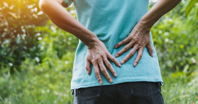 Nos conseils pour jardiner sans douleur