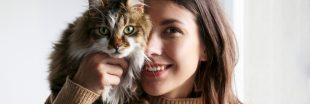 Apaisement, joie... Les bienfaits des animaux de compagnie sur les humains