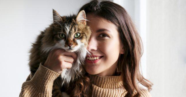 Apaisement, joie… Les bienfaits des animaux de compagnie sur les humains
