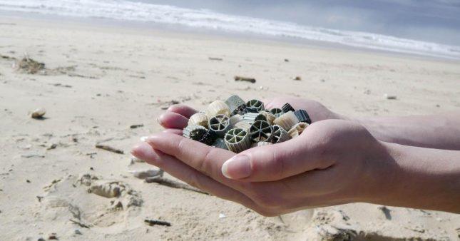 Après les mégots, les masques… déferlement de biomédias sur les plages