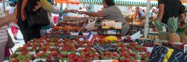 Prix des fruits et légumes en baisse malgré la pandémie et la météo