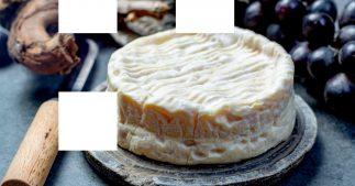 camembert AOP lactalis
