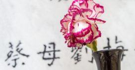 Mort ou vif, se loger à Hong-Kong coûte une fortune