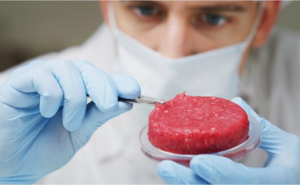 viande cultivée